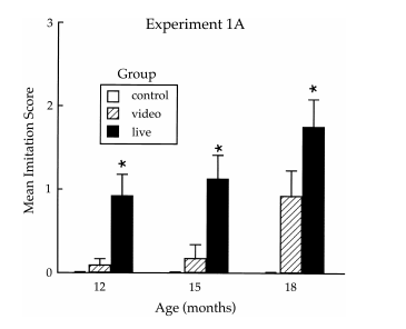Developmental changes in imitation from television during infancy, Rachel Barr & Harlene Hayne